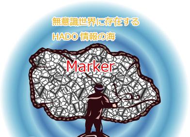 マーカー投網